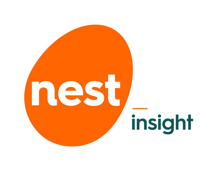 Nest Insight Logo
